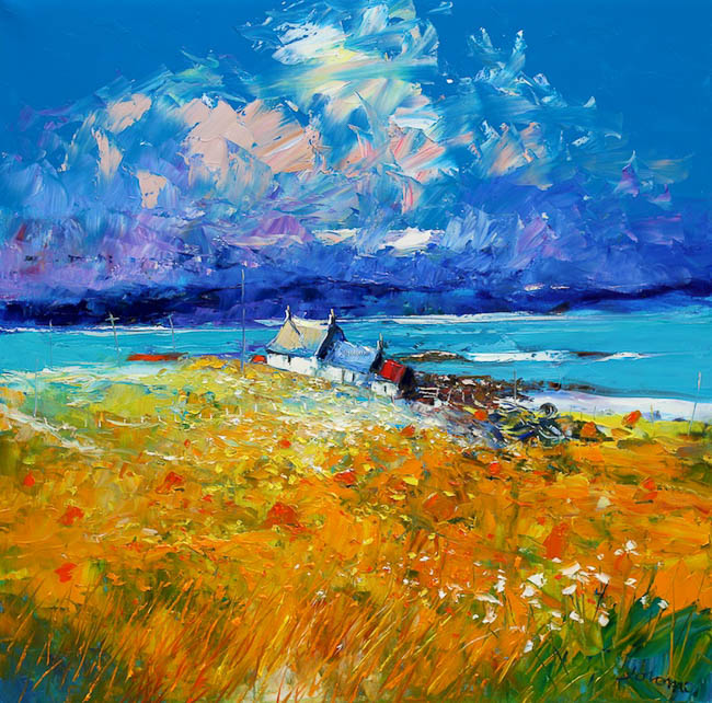 The Ardionra Hayfield A Summer Morning on Iona by Jolomo