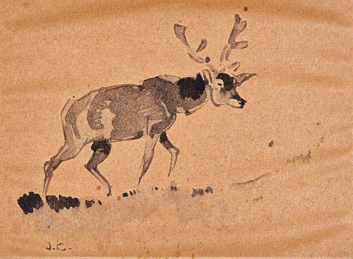 Summer Red Deer in Doñana Spain