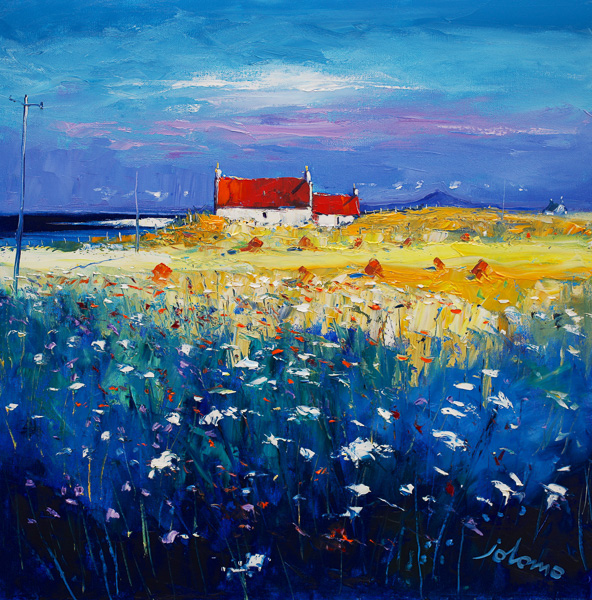 Hayfield Isle of Tiree looking to Ben More 24x24-2